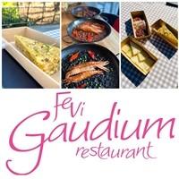 Fevi Gaudium
